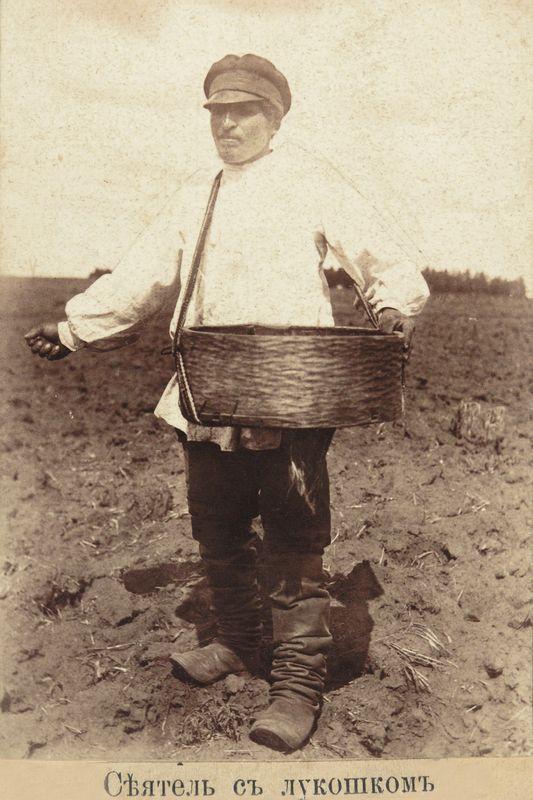 Сев в курганском уезде в конце XIX в. Фотография А.И.Кочешева,. конец XIX.