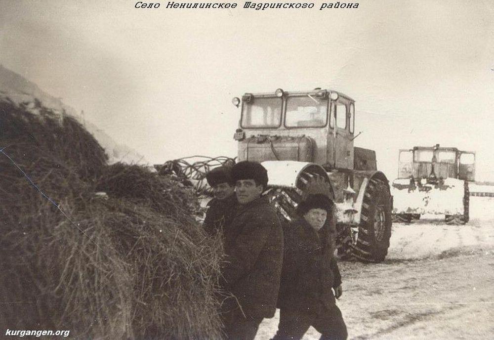 Подвозка сена. Шадринский район. 1970-е гг.